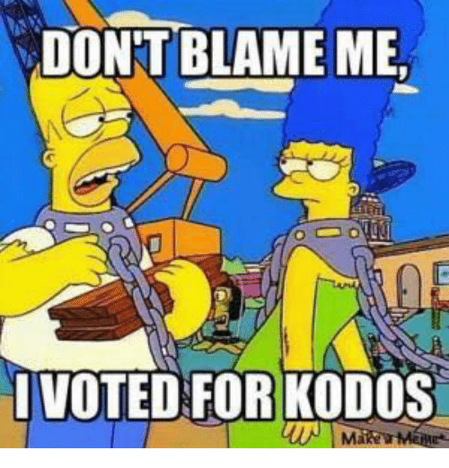 dont-blame-me-voted-for-kodos-6413305.png.c7989be5b53a93291ded33b725379bbc.png